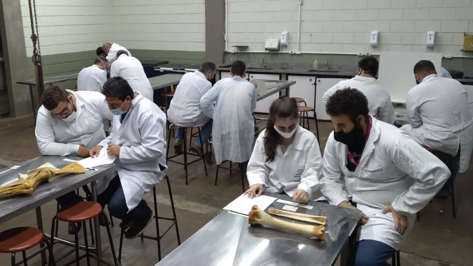 A imagem mostra os alunos durante a atividade, em bancadas com as peças anatômicas e esqueletos.